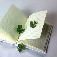日記を付ける効用