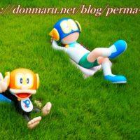 perma-link
